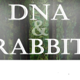 Belfrey Players present DNA by Dennis Kelly, prior to taking it to the Isle-of-Man Easter Drama Festival. Belfrey Youth Theatre present their recent production of Rabbit by David Foxton. boxoffice@belfreytheatre.com or 01952 222277 for tickets